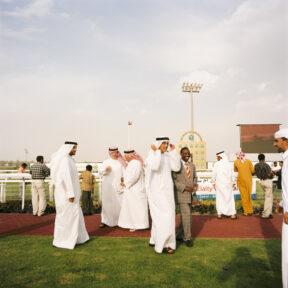 """Pferderennen des """"Abu Dhabi Equestrian Clubs"""", nach einem Rennen"""