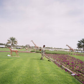 Kreisverkehr bei Al Ain