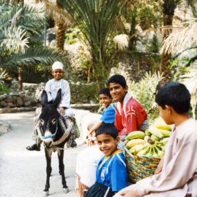 Oman, Oase, Januar 2007#Oman, Oasis, January 2007